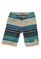 O'Neill Jungen PB Santacruz Stripe Boardshorts, White Aop W/Blue, 164, 603180-1950