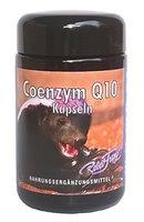 Coenzym Q10 by Robert Franz