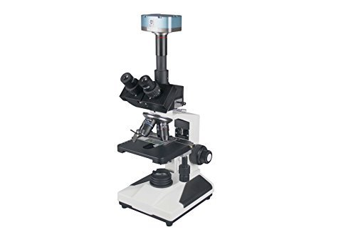 Profi mikroskop vergleich 2019