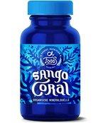 Sango Coral - Fossile Meereskorallen - Hochdosiertes organisches Kalzium / Calcium - Organische Korallensedimente ohne Zusätze von Organic Alpha - 80 Kapseln mit je 1.000mg