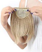 S-noilite Deluxy Pony Clip in Haarverlängerung Ein Tresse 8 Zoll(ca.20cm) Glatt Pony Haarverdichtung Haarteil Perücke Graublond
