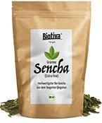 Bio Sencha Grüntee (250g, Bio) I Top-Qualität zum Spitzenpreis I Japan-Style Sencha I Vorratspackung für 100 Tassen I 30 Jahre Tee Erfahrung und Direktimport