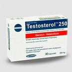 TestosterolTM250 - Sterolium Metabolicum - Testosteron Booster - Sterole + Saponine - Muskelaufbau