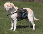 Trixie 30102 Rucksack für Hunde, M: 23 × 15 cm, schwarz
