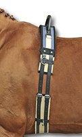 HKM 542119 Longiergurt mit Haltegriff, L, dunkelblau / beige