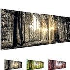 Bilder 110 x 40 cm !!! Sensationspreis !!! XXL Format TOP Vlies Leinwand Wand Bild Feng Shui Kunstdrucke Wandbild ! 3 Farben zur Auswahl ! Fertig Aufgespannt !!! 100% MADE IN GERMANY !!! 503811a