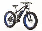 Erwachsene Elektrische Fat Mountain Bike-Fat Reifen-Beach Reifen