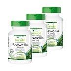 Boswellia Weihrauch 400mg, Boswellia serrata - indischer Weihrauch, mind. 65% Boswelliasäuren, 2 plus 1 (3x 120 vegetarische Tabletten)