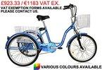 Jorvik 66cm Elektro Dreirad 36V 250Ansätzen Erwachsene Trike/Behinderte/Cargo/E Trike-verschiedene Farben erhältlich, blau
