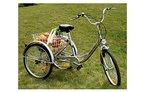 ZNL FANO-TEC Dreirad Für Erwachsene Lastenfahrrad Erwachsenendreirad Seniorenrad FT-7009 Silber