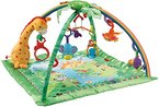 Mattel Fisher-Price K4562 Rainforest Erlebnisdecke