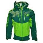 adidas Herren Gore-Tex Pro Outdoor Jacke Terrex IceFeather Jacket (UK-46-48-D-56-F-198, grün)